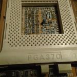 DSC02945 (Copy)